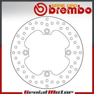 Brake Disc Fixed Brembo Serie Oro Rear for Husqvarna Te 450 2000 > 2006