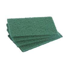 5 Eponges à fibres grattantes - 15 x 10 cm - Vert
