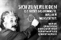 Albert Einstein Tafel Spruch 42 Blechschild Schild gewölbt Tin Sign 20 x 30 cm