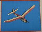 """""""MYSTERY MAN"""", Laser Cut, Free Flight Kit, W/S 36"""" .020 Power, Bags Sealed"""