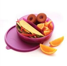 Tupperware Kids Divided Lunch Box - Brand New - Free Shipping