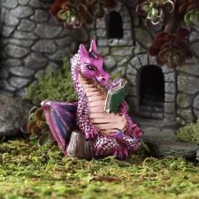 Fiddlehead Reader Dragon Fairy Garden Miniature Figurine