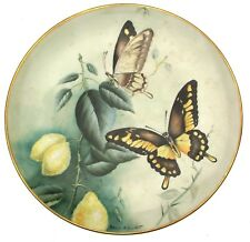 Studio DRB Devon Brazil Exotic Butterflies handpainted plate by David Bowkett