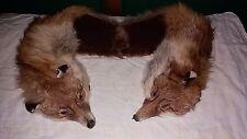 Collo di volpe rossa vintage