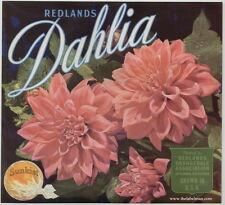 DAHLIA Vintage Redlands Orange Crate Label, Pink Flower, ***AN ORIGINAL LABEL***