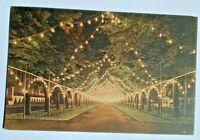 AK DRESDEN Intern. Hygiene -Ausstellung Dresden 1911, Illumination Herkulesallee