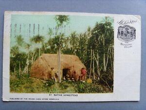 HONOLULU HAWAII NATIVE HOMESTEAD EARLY 1903 ANTIQUE COLOUR POSTCARD