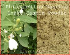 100g Rhinacanthus Nasutus Snake Jasmin Powder Allergy Skin Immune Brain Boost