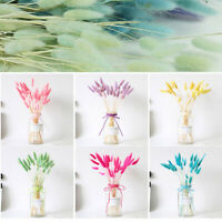 20pcs Colorful Artificial Dried Flowers Rabbit Tail Grass Bouquet Long Bunches