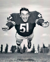 Chicago Bears Linebacker DICK BUTKUS Glossy 8x10 Photo NFL Football Print Poster