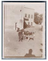 Egypte, Un vendeur d'eau et son âne  Vintage citrate print Tirage cit