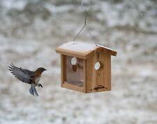 Kettle Moraine Hanging Cedar Bluebird Mealworm Feeder #8515 Offer Mealworms