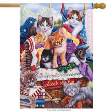 """Loads of Fun Kitten House Flag Everyday Clothing Large Banner 28"""" x 40"""""""