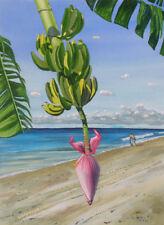 Tropical, Banana, Ocean, Beach, Surfer Original Watercolor Painting, Signed, Art