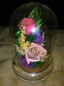 """Vintage Natural Expressions Freeze-Dried Floral Arrangement in 5"""" Glass Dome."""