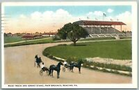 READING PA RACE TRACK ANTIQUE POSTCARD
