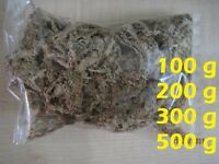 A++ Top Quality Chile Sphagnum Moss for Cattleya phalaenopsis Dendrobium Orchid