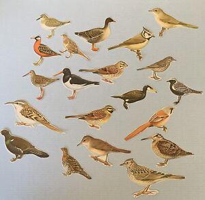 20 Fussy Cut Birds Plus An Ephemera Folder