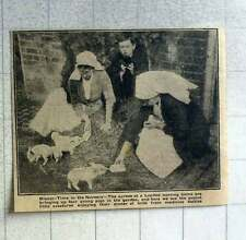 1921 Nurses At London Nursing Home Bringing Up 4 Pigs In The Garden