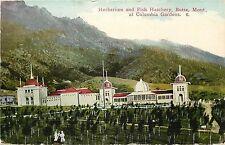 c1907 Vintage Postcard; Herbarium & Fish Hatchery Butte MT at Columbia Gardens