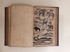 Animated Nature - A history of the Earth & Animated Nature 1840 Oliver Goldsmith