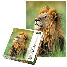 Trefl 1000 Piece Nature Kenyan Lion Adult Large Field Floor Jigsaw Puzzle NEW