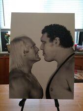 "WWE Hulk Hogan Andre the Giant Poster Print 12""x16"""
