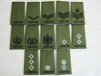 Yorkshire Regiment Rank Slides  - Olive Embroidered British Army  Military