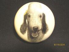 Porcelain Bedlington Terrier Head Study Paperweight