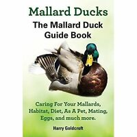 Mallard Ducks, Brand New, Free P&P in the UK