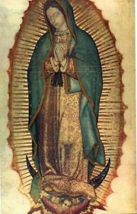 Our Lady Of Guadalupe repro oil painting