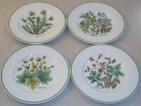 SET OF 4  Tiffany & Co. WILD FLOWERS by Johnson Bros Salad Plates  about 8 1/4""