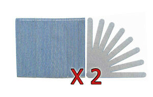 Standard Zebra 80/80 Grit (Blue Center) Cushioned Beauty Salon Nail Files