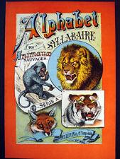 Vintage Imagerie Pellerin Alphabet Syllabaire des Animaux Sauvages Inv1515