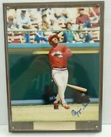 Ozzie Smith Autographed Signed 8x10 Plaque w/COA 081519DBT