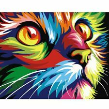 Bright Colourful Cat Van Gogh Style Paint By Numbers Paint Included Canvas Art