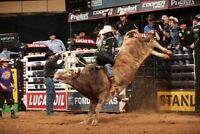 Hot Professional Bull Riders (PBR) Print Poster 12x18 24x36in C-220