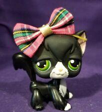 Littlest Pet Shop #55 Kitty Cat Angora Black White Green Dot Eyes Red Magnet