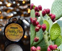 Prickly Pear Moisturizer anti-aging wonder.