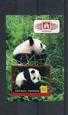 Antigua & Barbuda 2010 MNH China Expo Beijing 2010 Giant Pandas 1v S/S Stamps