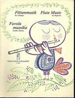 """ Flötenmusik für Anfänger """