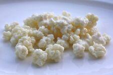 Non GMO ORGANIC Live Milk Kefir Grains Best Probiotic Symbiotic Culture