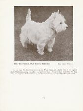 WESTIE WEST HIGHLAND WHITE TERRIER OLD VINTAGE 1934 NAMED DOG PRINT PAGE