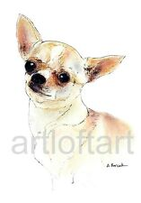 "CHIHUAHUA #5     DOG  ACEO Card Print by A Borcuk   2.5""x3.5"""