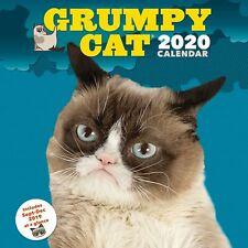 H127 GRUMPY CAT Hood Wrap Wraps Decal Sticker Tint Vinyl Image Graphic