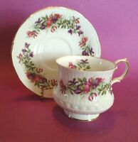 Queens By Rosina Pedestal TeaCup And Saucer - Wild Flowers Pattern - England