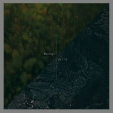 FLAAMINGOS / THE KVB Split EP - LP / Vinyl