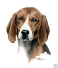 English Foxhound Art Print Dog Painting 8 x 10 by Watercolor Artist Djr