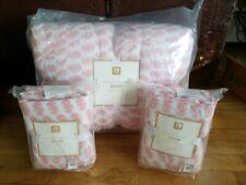 Pottery Barn Teen Paisley Pintuck Quilt full/queen 2 standard shams