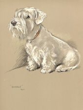 SEALYHAM TERRIER CHARMING DOG GREETINGS NOTE CARD CUTE SITTING DOG